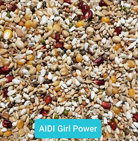 aidigirlpower